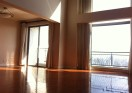Penthouse apartment rent in The Summit of French Concession
