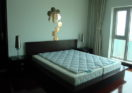 Rent  Apartment in Shimao Riviera of pudong lujiazui Shanghai