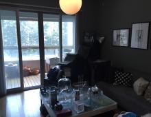 One Park Avenue Living Room