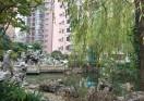 lu wan Minimalist apartment for rent at Luwan Stadium