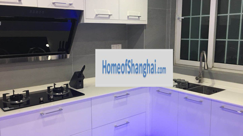 rent apartment Hongqiao Gubei Penthouse Shanghai SCIS