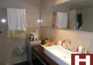 Rent apartment for rent in French Concession Shanghai for expats housing