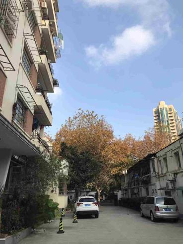 Shanghai Flat to rent Heng shan road French Concession Shanghai