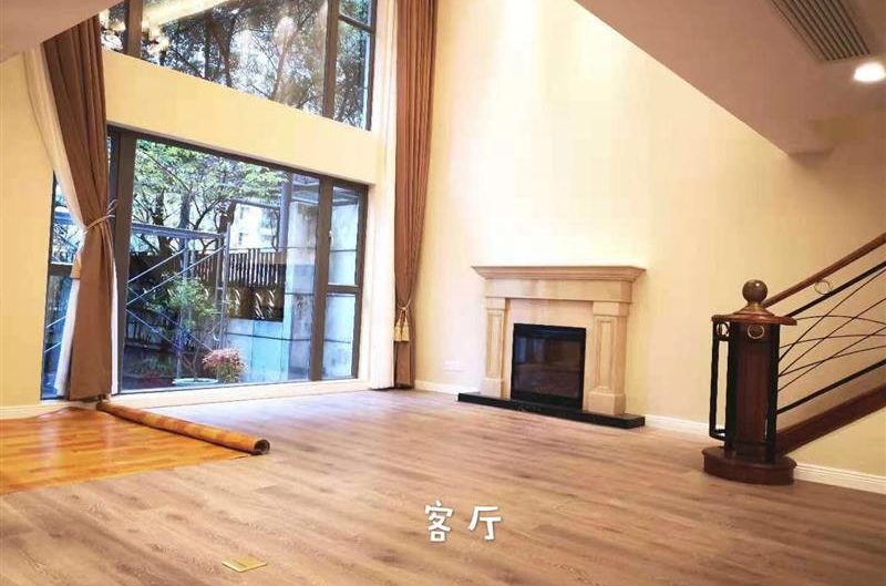 Shanghai Luxury Apartment In Summit To Rent French Concessionshanghai