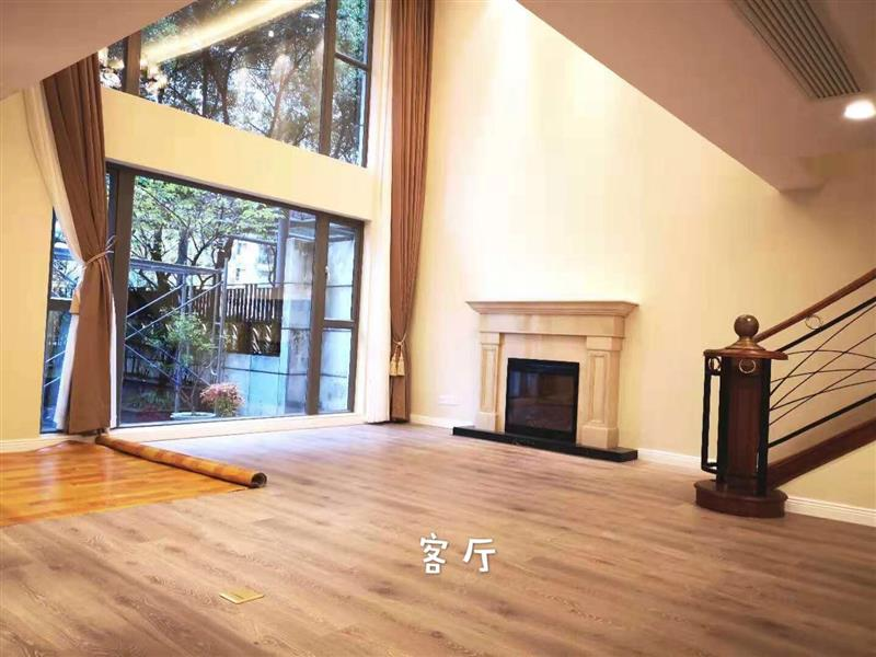 Shanghai Luxury Apartment in Summit to Rent in French Concession